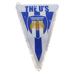 The Us Pennant